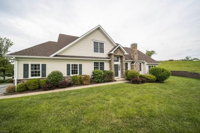 100 Briar Ct, Hardyston Twp., NJ 07419 (#3717340) :: Rowack Real Estate Team