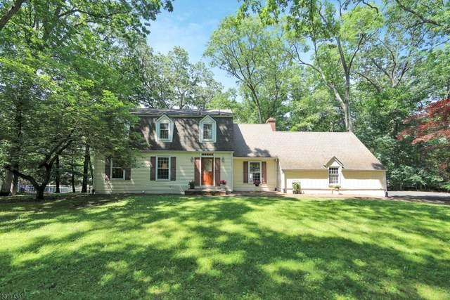 892 Roberts Ct, Franklin Lakes Boro, NJ 07417 (MLS #3717484) :: Team Francesco/Christie's International Real Estate