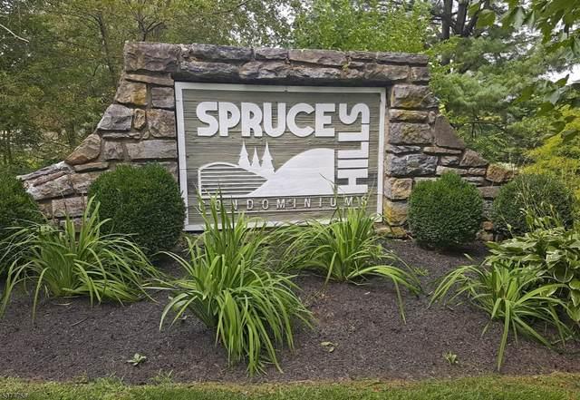 112 Spruce Hills Dr, Glen Gardner Boro, NJ 08826 (MLS #3717561) :: Kay Platinum Real Estate Group