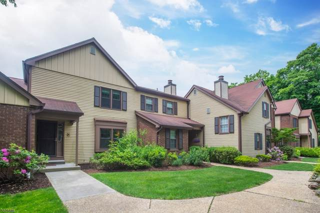 33 Oriole Dr, Allamuchy Twp., NJ 07840 (#3717619) :: Rowack Real Estate Team