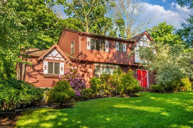 2 Auriemma Ct, Roxbury Twp., NJ 07850 (MLS #3717854) :: SR Real Estate Group