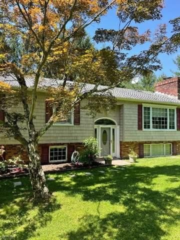 62 South St, Frelinghuysen Twp., NJ 07821 (MLS #3717910) :: Team Braconi   Christie's International Real Estate   Northern New Jersey