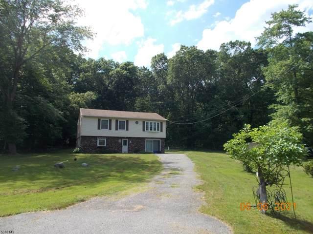 3 Deer Ln, Montague Twp., NJ 07827 (MLS #3718153) :: REMAX Platinum