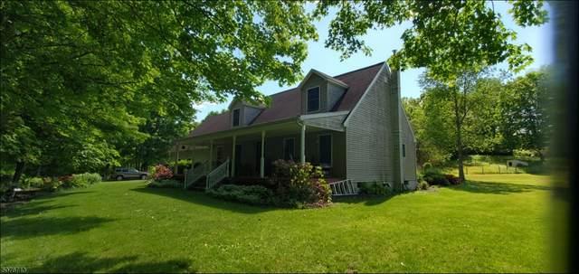 36 Old Clove Rd, Wantage Twp., NJ 07461 (MLS #3718291) :: REMAX Platinum