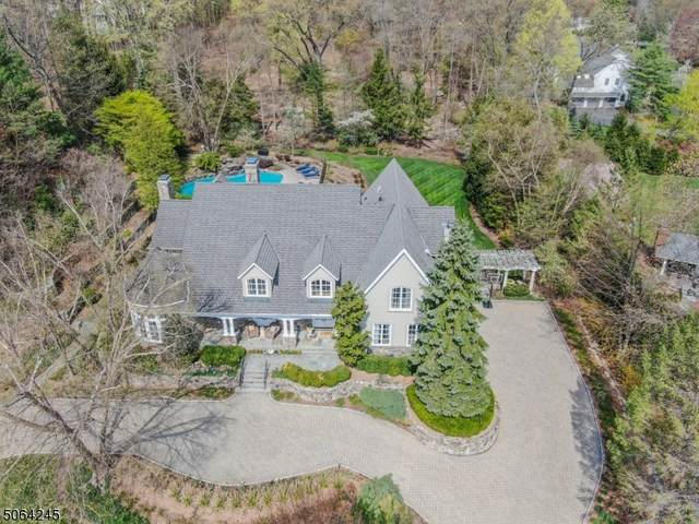 746 Wooded Trl, Franklin Lakes Boro, NJ 07417 (MLS #3719240) :: Team Francesco/Christie's International Real Estate