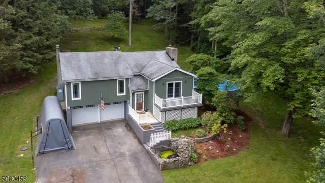 18 Doremus Ln, Montague Twp., NJ 07827 (MLS #3720245) :: Team Francesco/Christie's International Real Estate