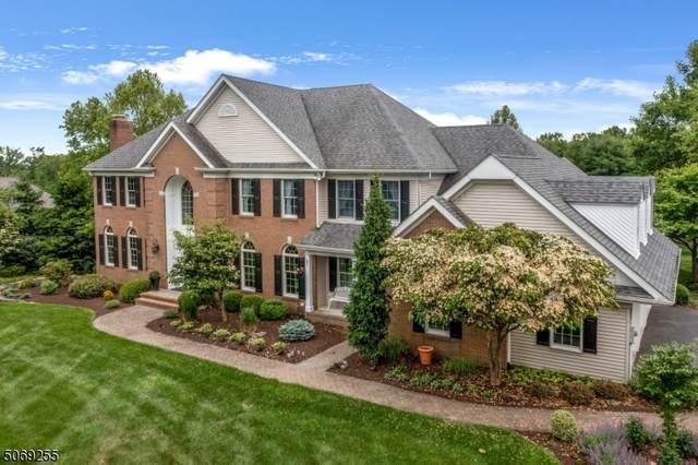 17 Pine Place, Clinton Twp., NJ 08801 (MLS #3720280) :: Team Francesco/Christie's International Real Estate