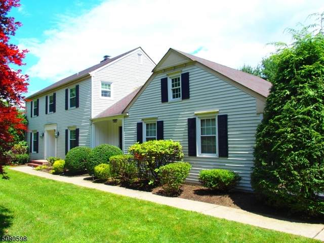 73 Fairmount Ave, Chester Boro, NJ 07930 (MLS #3720555) :: Corcoran Baer & McIntosh