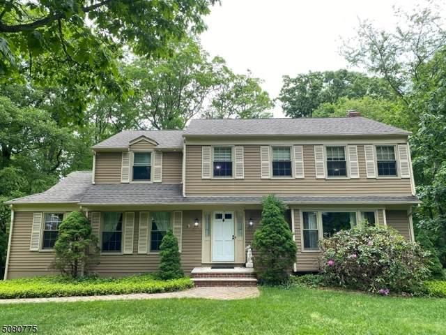 1 Morey Ln, Randolph Twp., NJ 07869 (#3720620) :: Rowack Real Estate Team