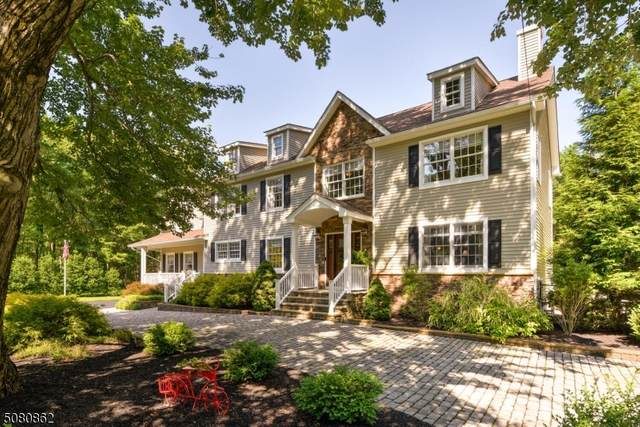 1337 Mt Vernon Rd, Bridgewater Twp., NJ 08807 (MLS #3720795) :: SR Real Estate Group