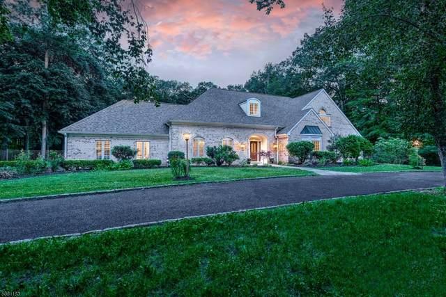 51 Brook Drive South, Harding Twp., NJ 07960 (MLS #3720867) :: Team Braconi   Christie's International Real Estate   Northern New Jersey