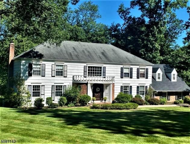 36 Dogwood Ter, Long Hill Twp., NJ 07946 (MLS #3720890) :: SR Real Estate Group