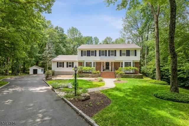 2 Hemlock Ln, Roxbury Twp., NJ 07836 (MLS #3720914) :: SR Real Estate Group