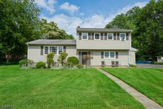 111 Cybowski Ct, South Plainfield Boro, NJ 07080 (MLS #3721100) :: Parikh Real Estate