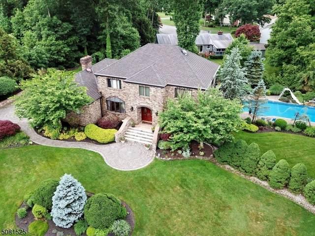1 Sparrow Ct, Jefferson Twp., NJ 07438 (MLS #3721185) :: Team Francesco/Christie's International Real Estate