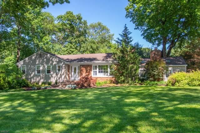 7 Derrygally Cir, Kinnelon Boro, NJ 07405 (MLS #3721324) :: SR Real Estate Group