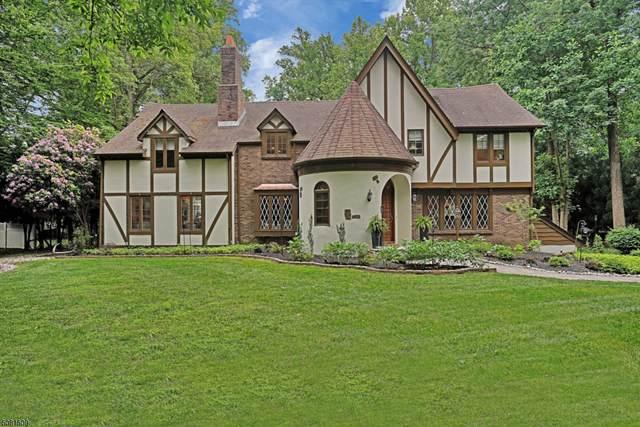 141 High Oaks Drive, Warren Twp., NJ 07059 (MLS #3721470) :: Team Francesco/Christie's International Real Estate