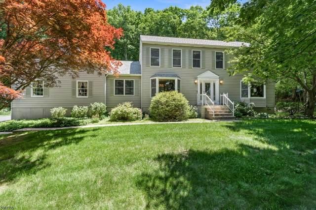 14 October Hill Rd, Jefferson Twp., NJ 07438 (MLS #3721518) :: Team Francesco/Christie's International Real Estate