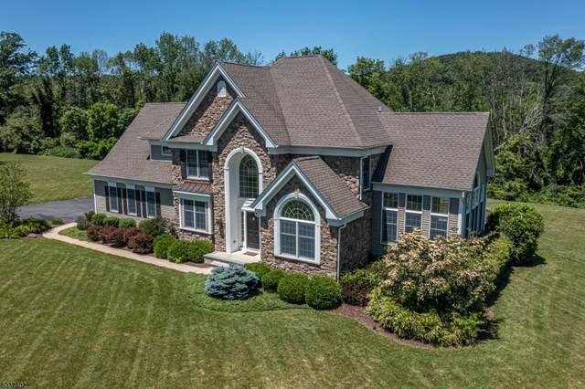 9 Lisa Ct, White Twp., NJ 07863 (#3721534) :: Rowack Real Estate Team