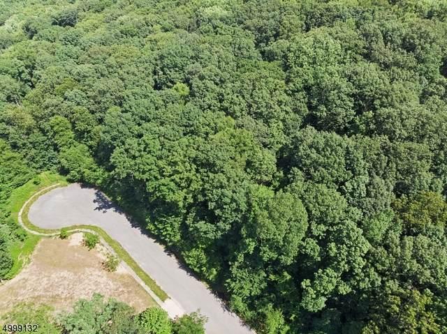 7 Settlers Ridge Ct, Washington Twp., NJ 07865 (MLS #3721582) :: Corcoran Baer & McIntosh