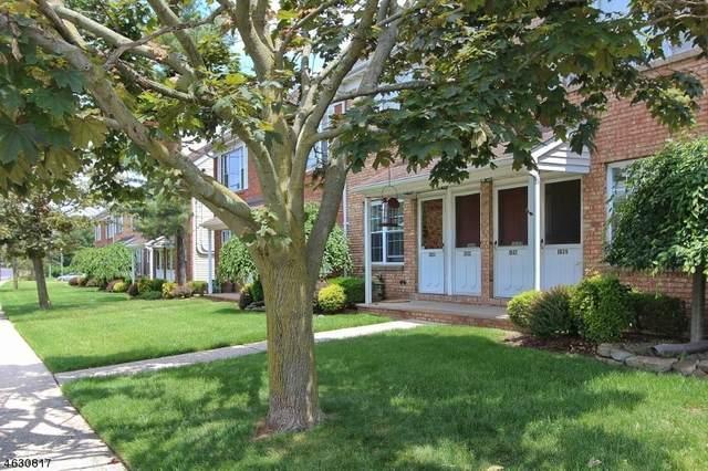 1039 Cellar Ave, Scotch Plains Twp., NJ 07076 (MLS #3721780) :: SR Real Estate Group