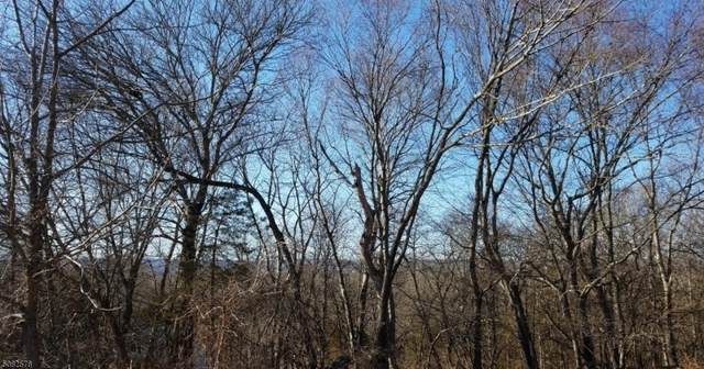 37 River View Dr, Hardwick Twp., NJ 07825 (MLS #3722064) :: Team Francesco/Christie's International Real Estate