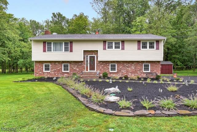 295 Zion Rd, Hillsborough Twp., NJ 08844 (MLS #3722679) :: The Michele Klug Team | Keller Williams Towne Square Realty