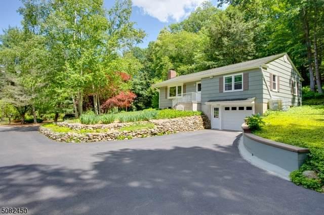 915 Route 619, Stillwater Twp., NJ 07860 (MLS #3722701) :: Team Francesco/Christie's International Real Estate