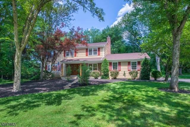 458 Lenape Trail, Bridgewater Twp., NJ 08807 (MLS #3722716) :: The Michele Klug Team | Keller Williams Towne Square Realty