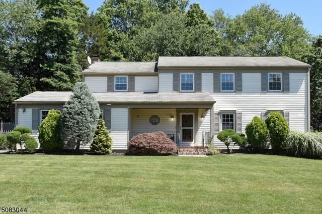 2 School View Dr, Morris Plains Boro, NJ 07950 (MLS #3723313) :: SR Real Estate Group