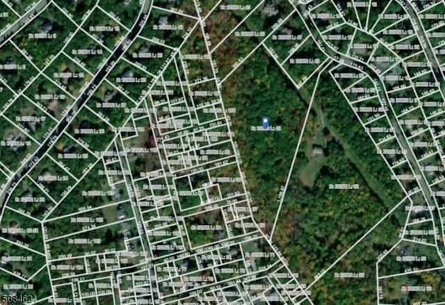 110 Edison Rd, Sparta Twp., NJ 07871 (MLS #3724054) :: Stonybrook Realty