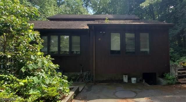 9 Village Pl, Jefferson Twp., NJ 07438 (MLS #3724463) :: Kiliszek Real Estate Experts