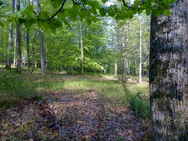 8 Preserve Ln, Bernardsville Boro, NJ 07924 (MLS #3724617) :: Team Braconi | Christie's International Real Estate | Northern New Jersey