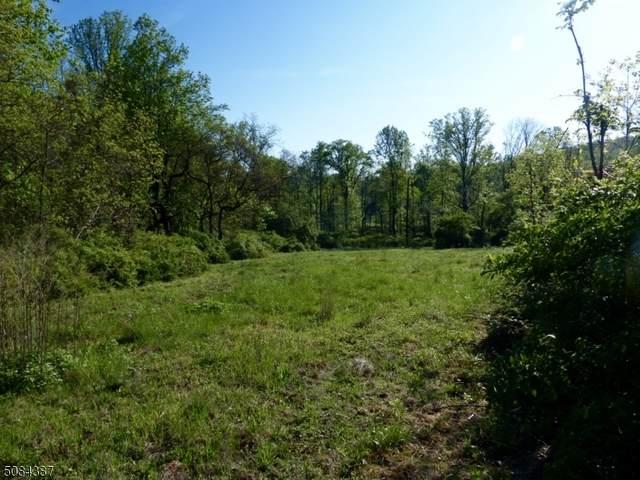 1 Preserve Ln, Bernardsville Boro, NJ 07924 (MLS #3724618) :: Team Braconi | Christie's International Real Estate | Northern New Jersey