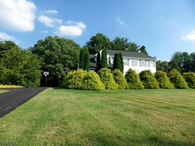 14 Autumn Dr, Mine Hill Twp., NJ 07803 (MLS #3724961) :: SR Real Estate Group