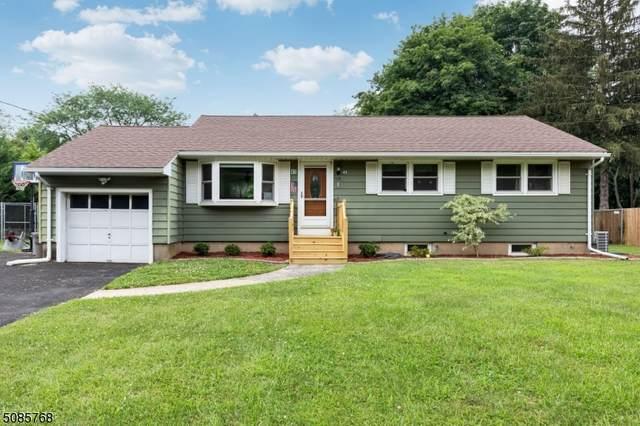 43 Pleasant Plains Rd, Franklin Twp., NJ 08823 (MLS #3725018) :: Kiliszek Real Estate Experts