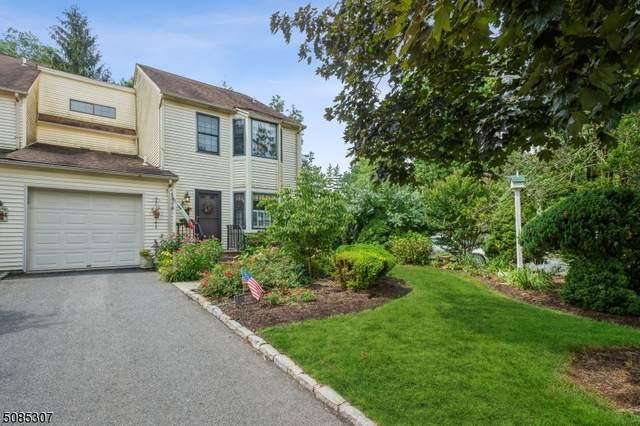 202 Burlington Ct, Raritan Twp., NJ 08822 (MLS #3725031) :: Stonybrook Realty