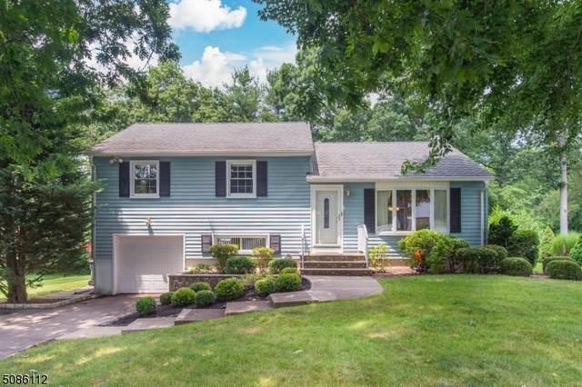 23 Apple Tree Lane, Hanover Twp., NJ 07950 (MLS #3725374) :: SR Real Estate Group