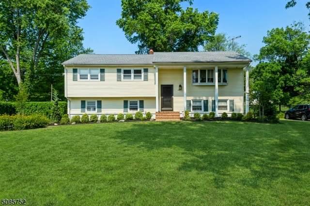 825 E Meadow Drive, Bound Brook Boro, NJ 08805 (MLS #3725408) :: The Dekanski Home Selling Team