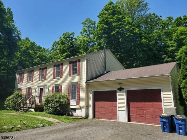 174 New Rd, Montague Twp., NJ 07827 (MLS #3725739) :: Compass New Jersey