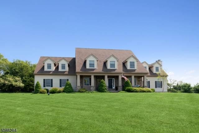 10 Hemingway Dr, Alexandria Twp., NJ 08848 (MLS #3726526) :: Stonybrook Realty