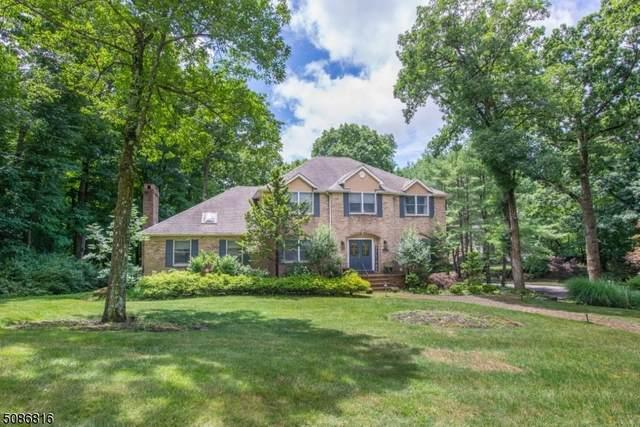 8 Denise Dr, Kinnelon Boro, NJ 07405 (MLS #3726688) :: SR Real Estate Group