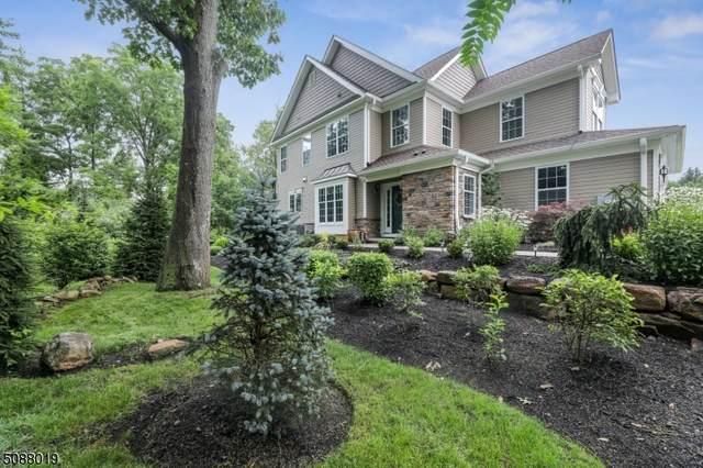4 Welsh Farm Rd, Washington Twp., NJ 07853 (MLS #3727020) :: Stonybrook Realty