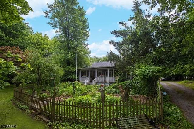 154 Mudtown Rd, Wantage Twp., NJ 07461 (MLS #3727142) :: The Dekanski Home Selling Team