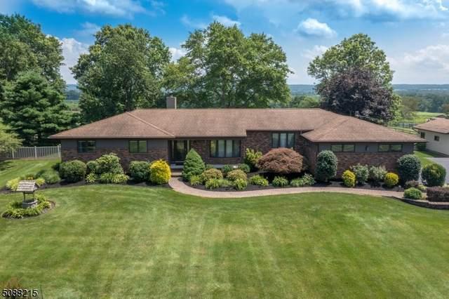 86 Old York Road, East Amwell Twp., NJ 08551 (MLS #3727215) :: Kiliszek Real Estate Experts