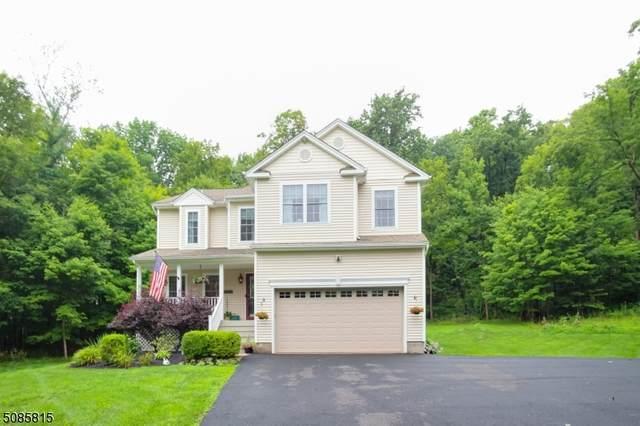 10 Roy Ct, Wantage Twp., NJ 07461 (MLS #3727491) :: The Dekanski Home Selling Team