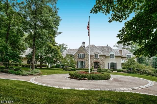 3 Potter Ln, Tewksbury Twp., NJ 08833 (MLS #3727823) :: Kiliszek Real Estate Experts