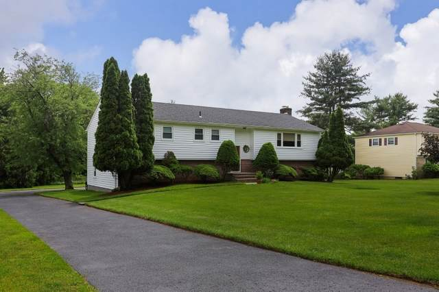 9 Greensview Dr, Scotch Plains Twp., NJ 07076 (MLS #3728022) :: Caitlyn Mulligan with RE/MAX Revolution