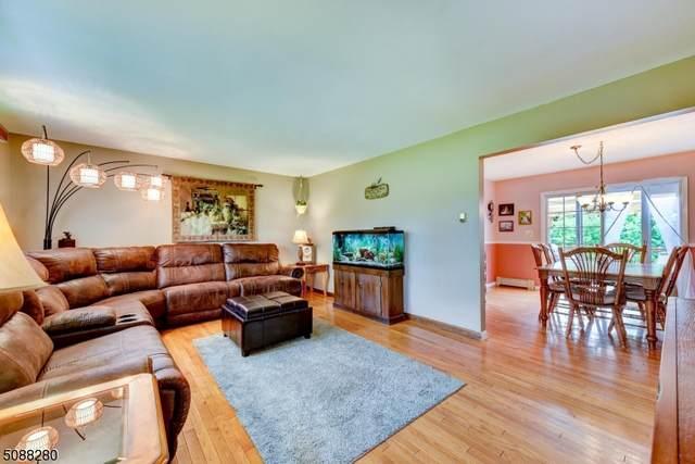 132 Route 284, Wantage Twp., NJ 07461 (MLS #3728123) :: The Dekanski Home Selling Team