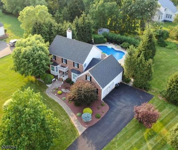 91 Oxford Pl, Hillsborough Twp., NJ 08844 (MLS #3728124) :: Stonybrook Realty